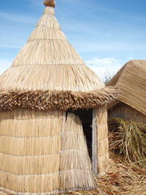 Uros 1 - reed house.jpg