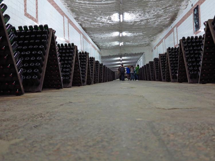 Cricova Winery Moldova 3